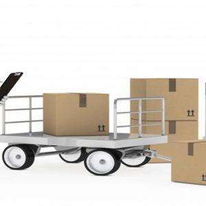 Logistics Management Specialist Resume Sample