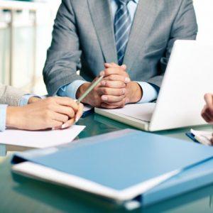 vp sales director resume/cv sample