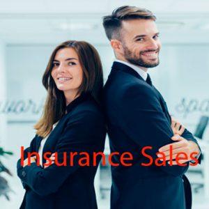 Insurance sales resume sample
