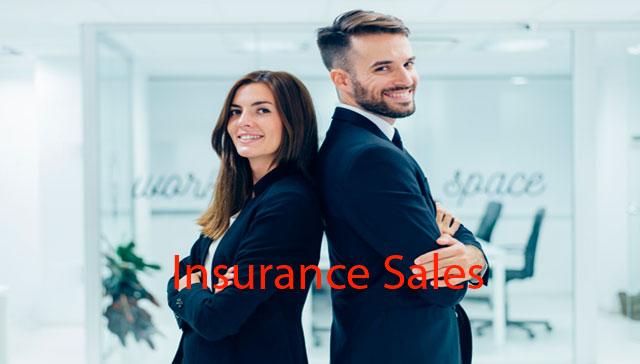 Insurance-sales-resume-sample